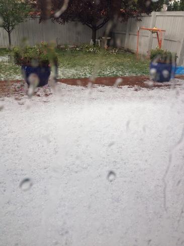 After the hail storm in Tuscany, Calgary! Calgary, AB