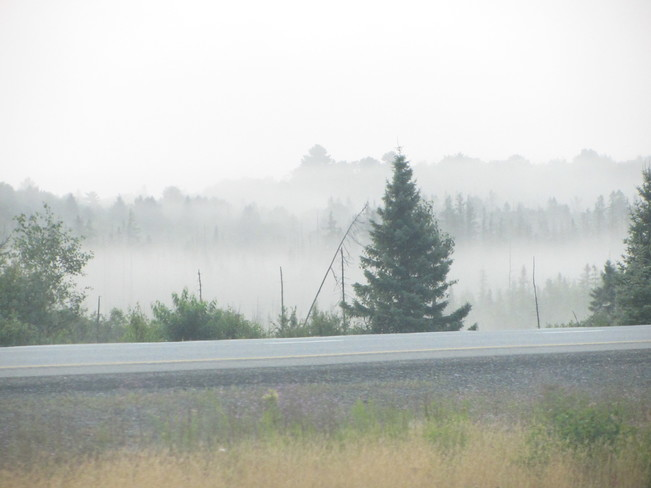 Morning Mist along Highway 11
