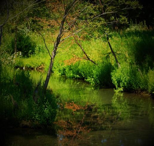 Where Waters Flow. calgary ab