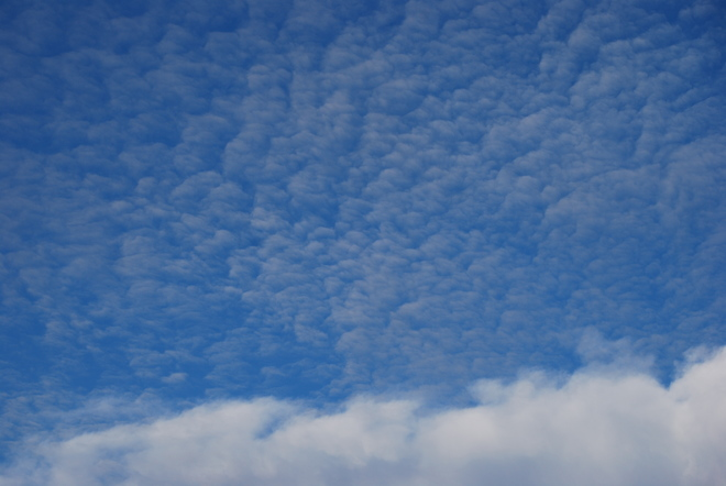 Mackerl Clouds Brandon, MB