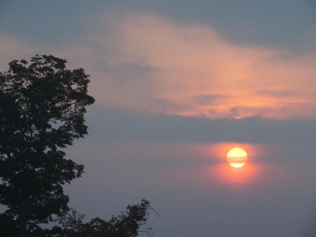 Morning sunrises Port Hope, ON