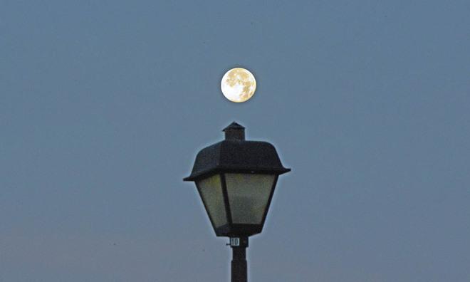 Super Moon in the Morning Lethbridge, Alberta Canada