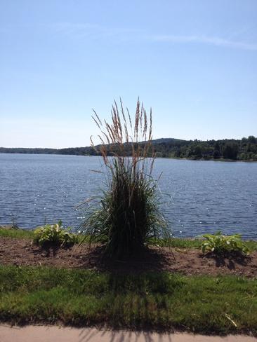 I love summer!! Grand Bay-Westfield, New Brunswick Canada
