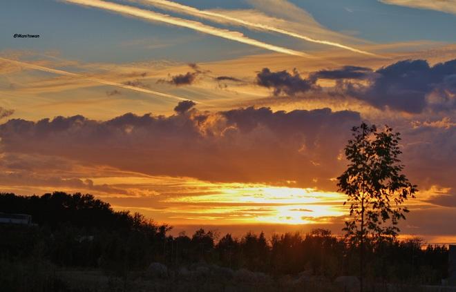 Bold Streaks Of Sunset Burnaby, BC