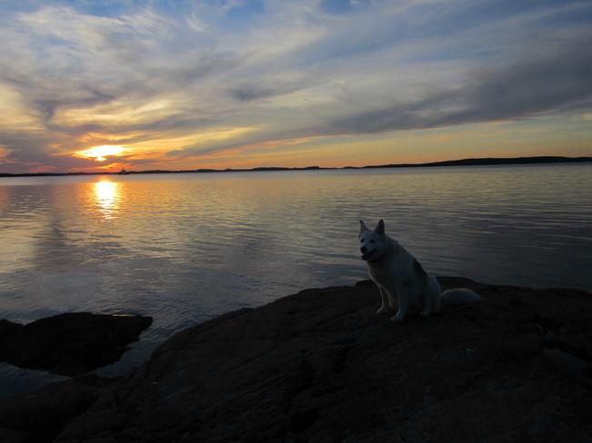 Beautiful Evening Birchy Bay, NL
