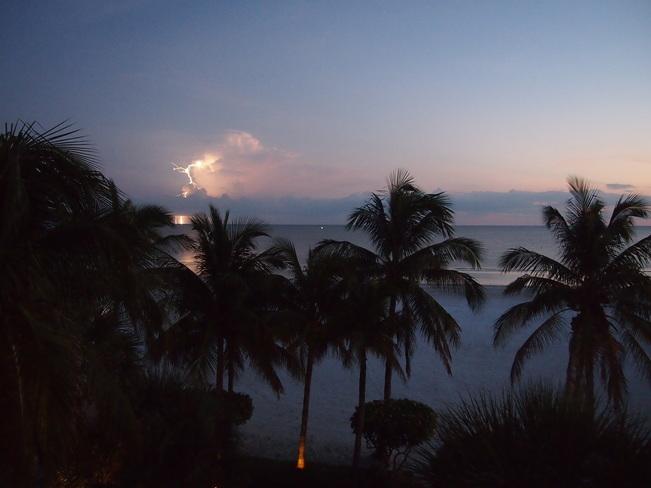 Peaceful lightening Florida, United States
