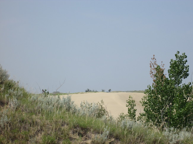 Great Sandhills Saskatchewan Sceptre, SK