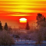 Frosty sun rise