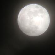 January 30th Super Moon 8:00pm