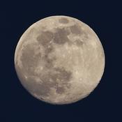 Almost Super Moon
