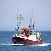 La pêche en Gaspésie (Gaspé)
