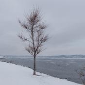 Promenade Samuel-De Champlain
