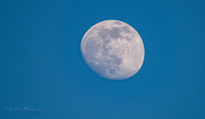 Half moon before sunset Vancouver, British Columbia, CA
