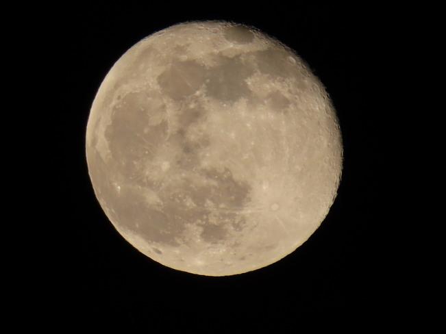 The Moon London, ON