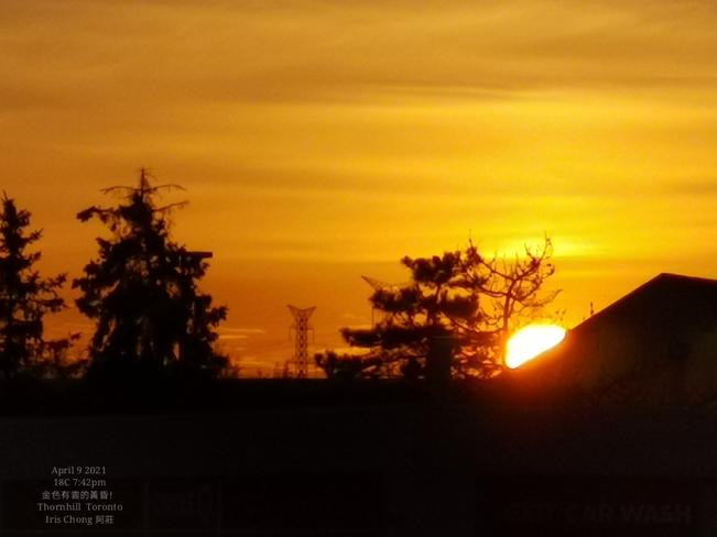 Spring golden sunset -18C Thornhill - April 9 2021 Thornhill, ON