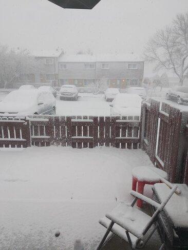 april snow storm. Edmonton, AB