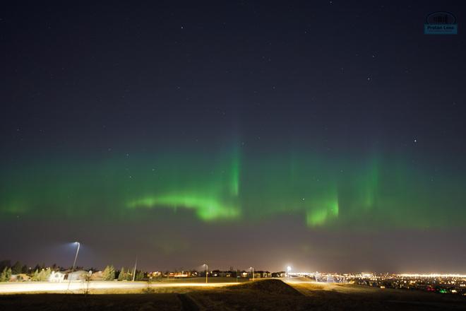 Aurora Borealis in Calgary, Alberta Calgary, AB