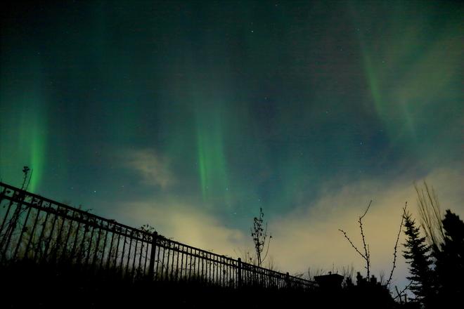 Northern lights Edmonton, AB