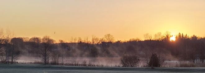 Sunrise on the Meadow Orillia, ON