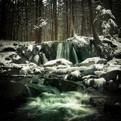 Rechute hivernale
