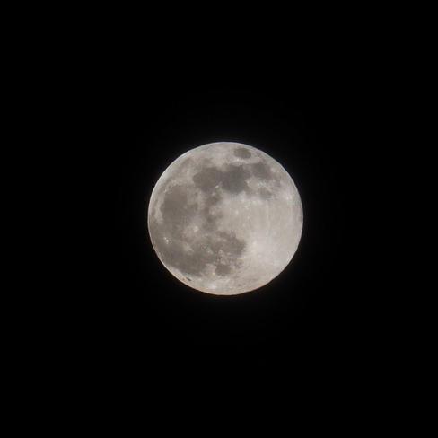 Pink Moon Frankford, Ontario, CA