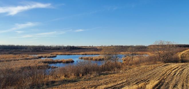 Prairie swamp Glenella-Lansdowne, MB