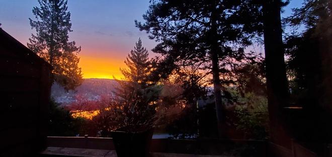 Spring Sun Rise Port Moody, BC