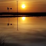 Evening Sun, sinking low.