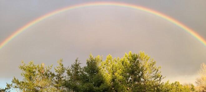 Rainbow Sudbury, ON