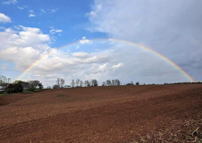double rainbow Noel, NS