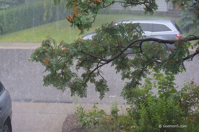 Enjoyable raindrops Toronto, ON