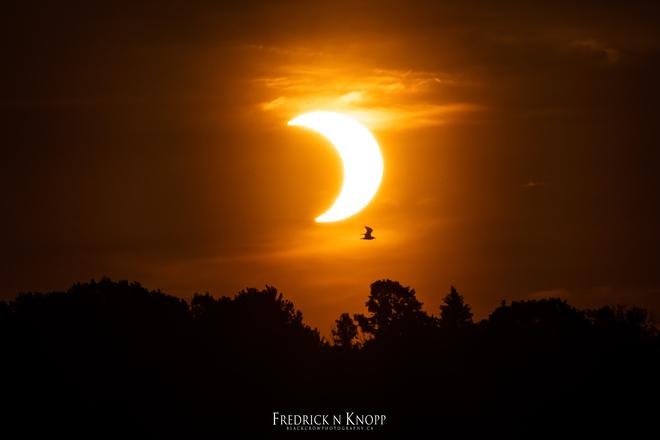 Partial Eclipse Sault Ste. Marie, ON