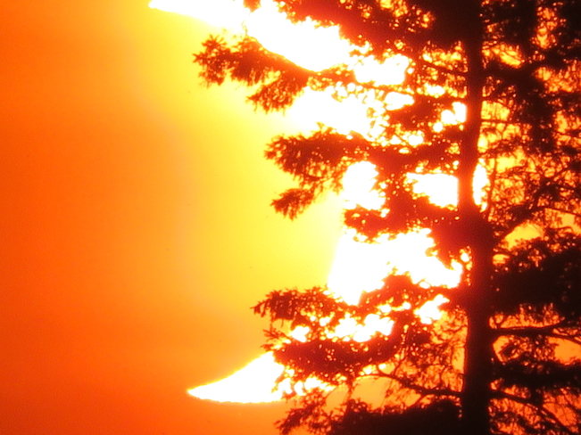 Solar Eclipse Teeswater, Ontario, CA