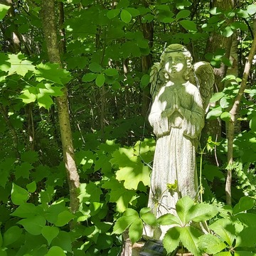 Our garden guardian