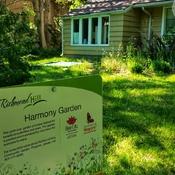 June 12 2021 22C Nice day! Harmony Garden - Mill Pond Gallery - Richmond Hill