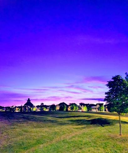 Purple skies. Oshawa, ON