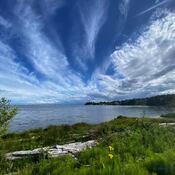 2021-06-14 - Beautiful afternoon over Esquimalt Lagoon