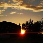 June 17 2021 22C 8:48pm June Golden sunset in Thornhill
