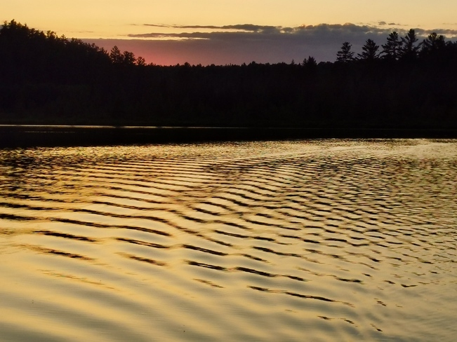 Evening fishing Rutherglen, ON
