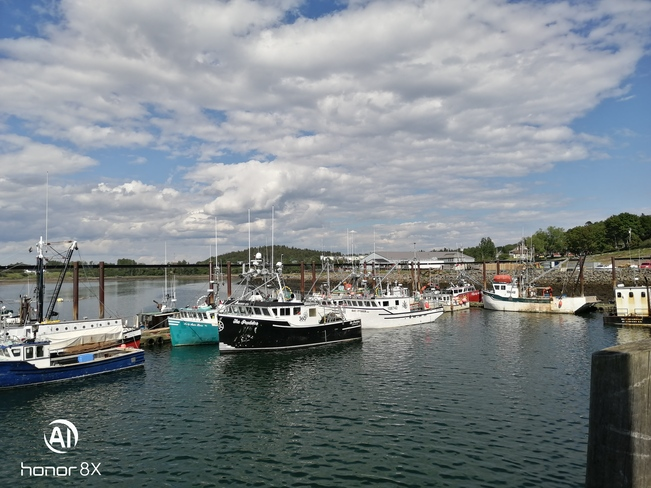 blacks Harbour warf Blacks Harbour, NB