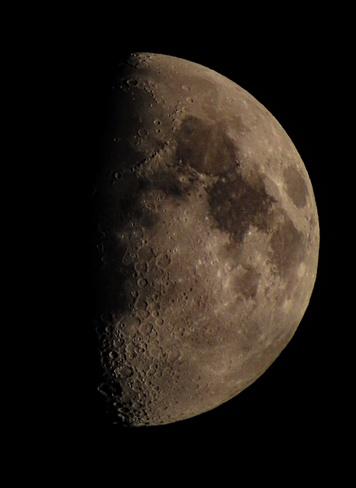 the beauty half moon Vaughan, ON