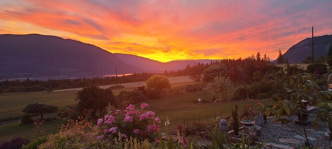 shuswap sunset Salmon Arm, BC