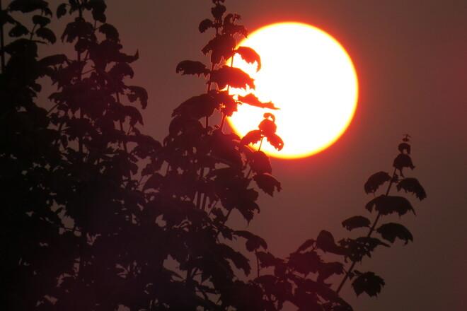Hazy Sun. Bridgewater, NS