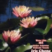 July 22 2021 24C Water Lilies - Humber Arboretum Etobicoke Toronto
