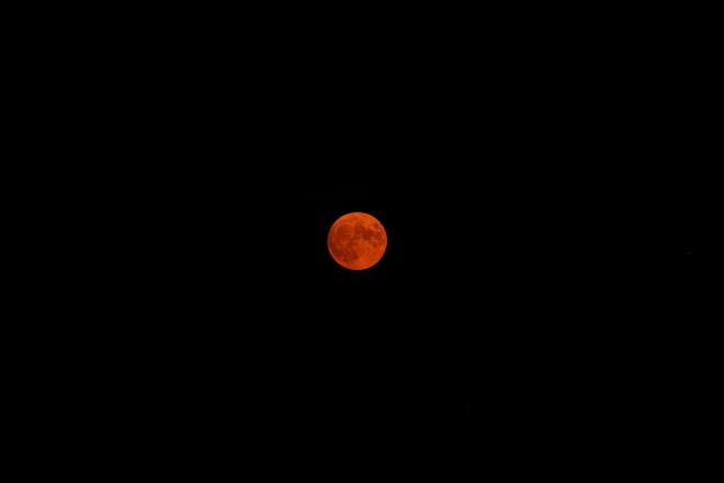 Beautiful Buck Moon Woodstock, ON