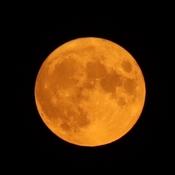Full 'buck' Moon