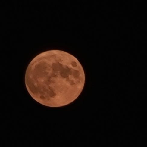 full moon Louisdale, NS
