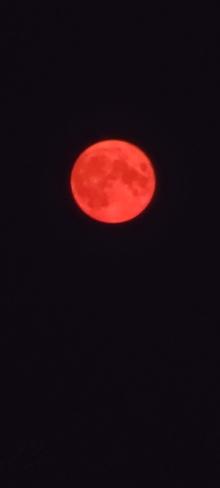 Smokey Buck Moon Lethbridge, AB