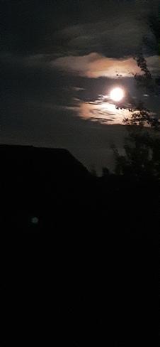 Buck moon Saint John, NB