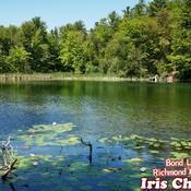 July 24 2021 Happy Saturday!:) Bond Lake - Peaceful summer in Richmond Hill